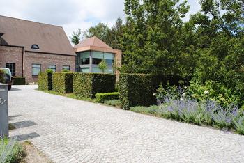 TuinOntwerpBureau De Keyser - Realisaties - Landschapstuin met vijver - Adegem