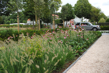 TuinOntwerpBureau De Keyser - Realisaties -Moderne tuin met vijver - Maldegem
